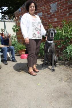 ce n'est pas un mastiff  mais un dogue allemand - Page 3 Img_8213