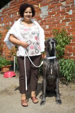 ce n'est pas un mastiff  mais un dogue allemand - Page 3 Img_8311