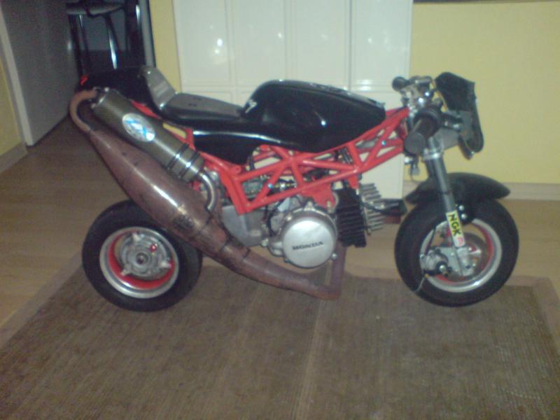 The King of Pocket Bikes!!!!! Dsc00210