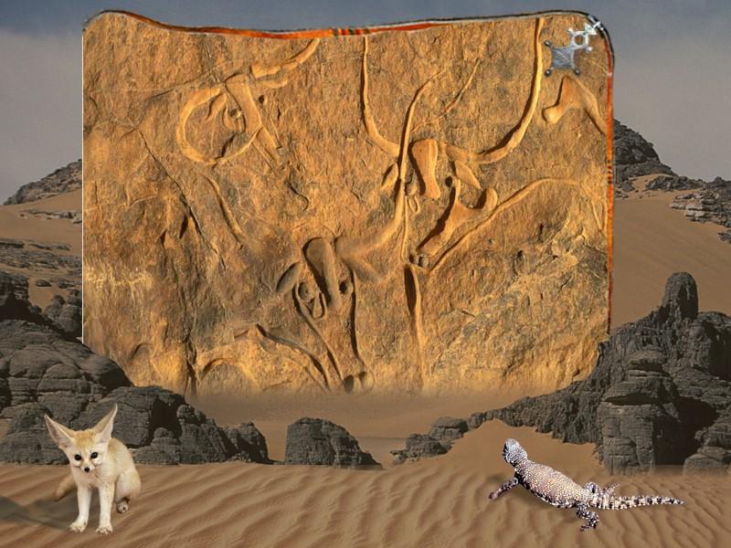 جمال بلادي -الصحراء- Slide314