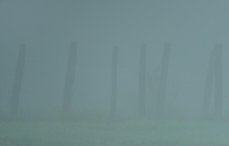 On voit bien le piquet du brouillard Piquet12