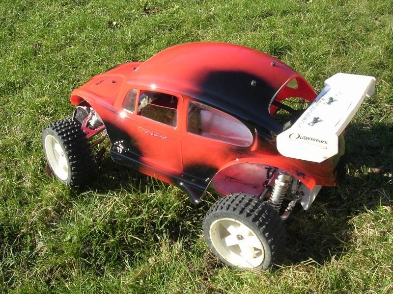 La beetle de Golum Dscn0011