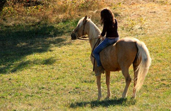 Equitation - Page 3 Kyaraa10