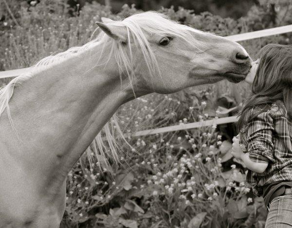 Equitation - Page 3 Kyaraa12