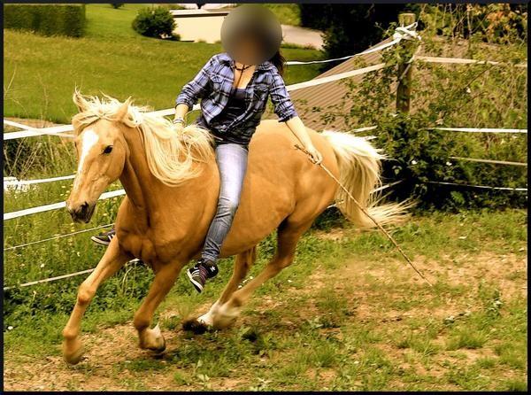 Equitation - Page 3 Kyaraa13