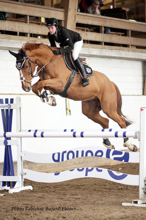 Equitation - Page 3 Rock0110