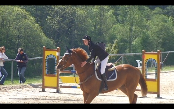 Equitation - Page 3 Rock0210