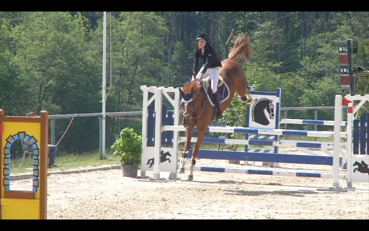 Equitation - Page 3 Rock0310