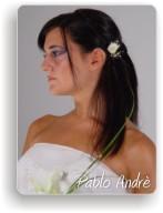 Peinados PELO LACIO Peinad10