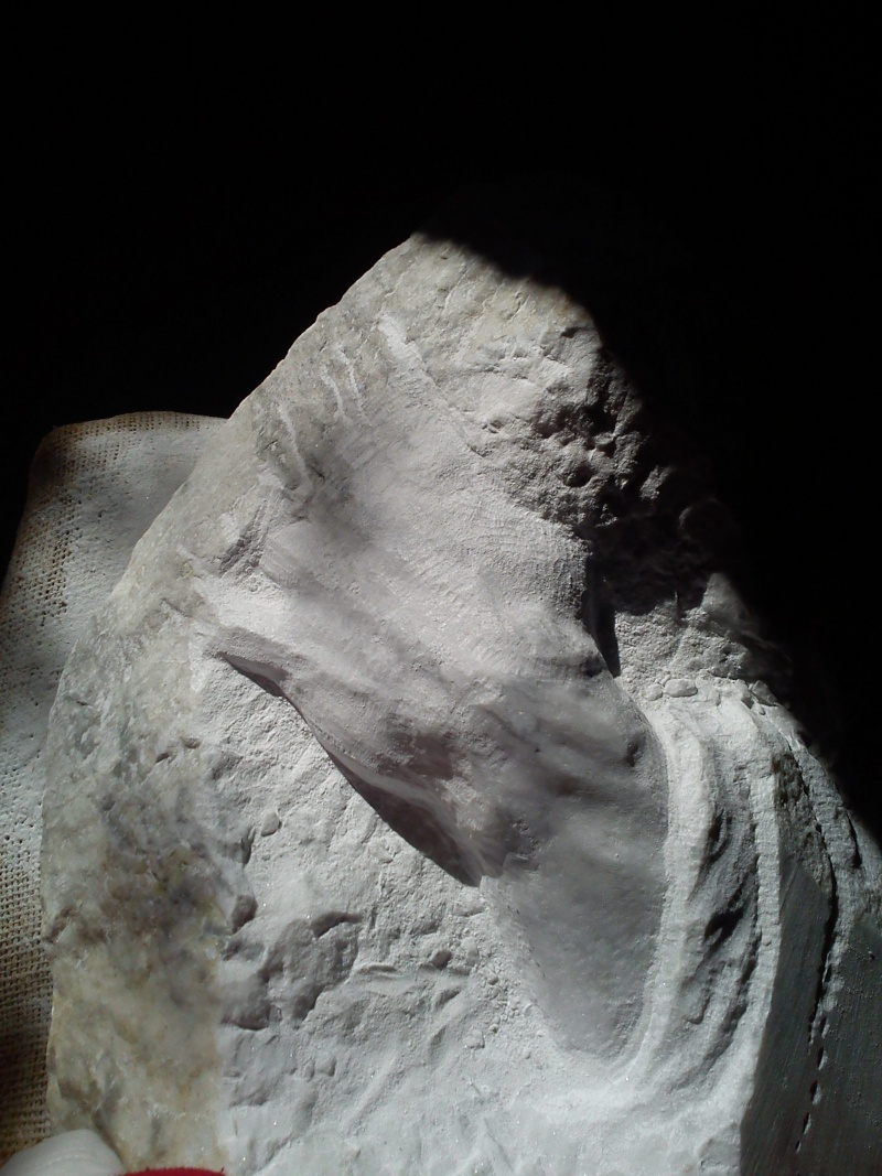 Mains en marbre de carrare A510