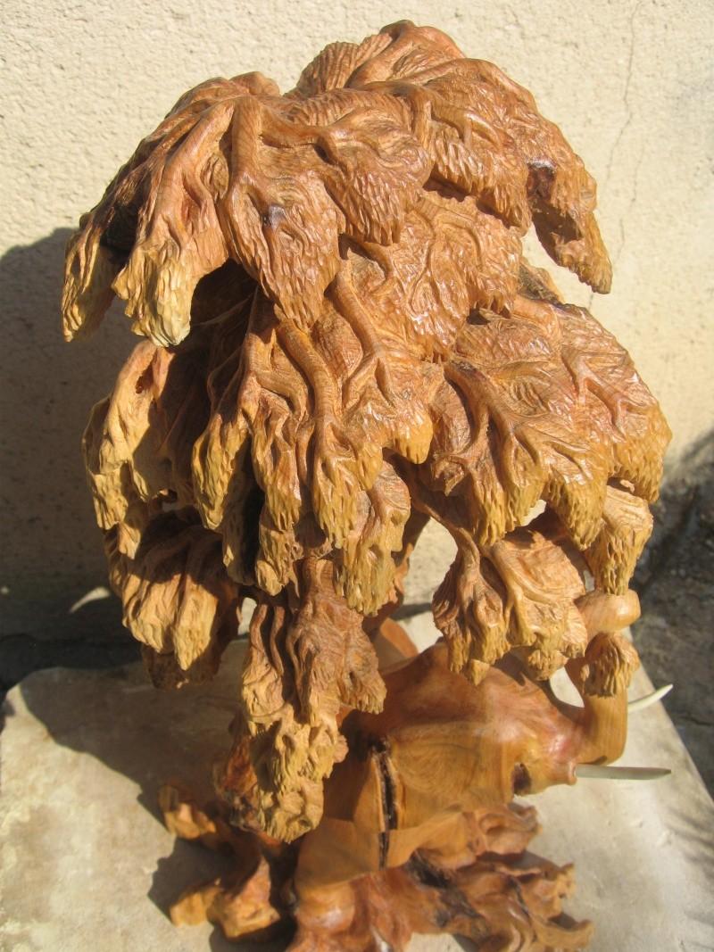 Pas à pas d'une sculpture en bois de cade - Page 2 Img_1420