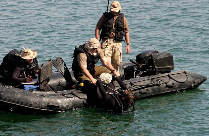 """Les dossiers photos de l'été, 1er juillet : """" the royal australian navy"""" 85rc10"""