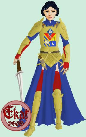 Les tenues  Armure12