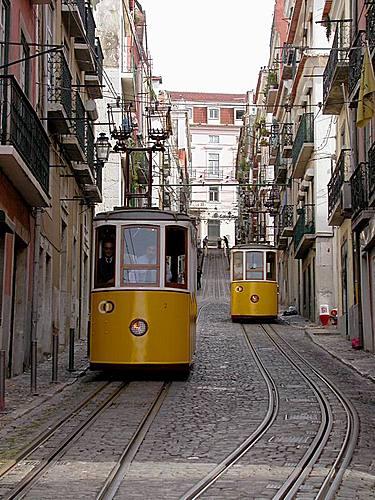 Esta Lisboa que amo... 31532022