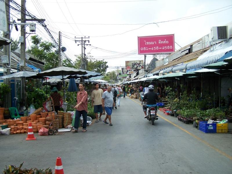 Petite visite au marché de Chatuchak, Bangkok 2_1610
