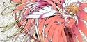 Tsubasa Reservoir Chronicle Wing7810