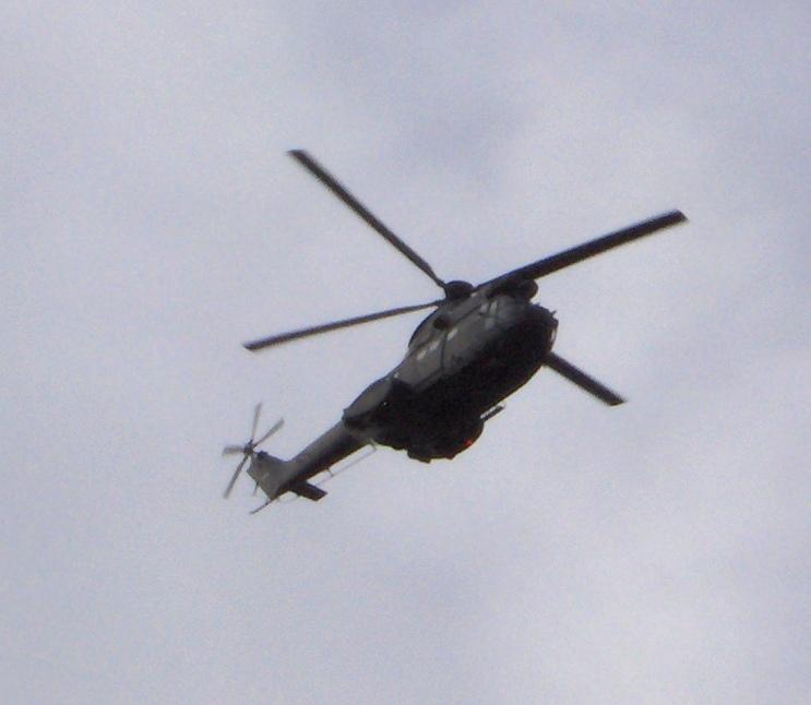 Elicoptere civile, militare, utilitare - 2008 - Pagina 3 Copy_o12