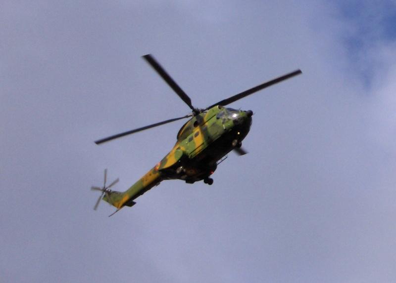 Elicoptere civile, militare, utilitare - 2008 - Pagina 4 Copy_o13