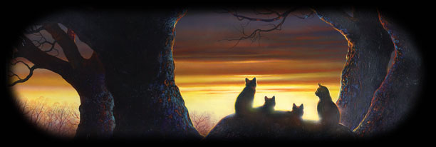 Warrior Clan Cats