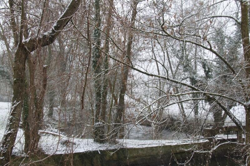 Neige du 29 janvier 2012 sur Wangen Img_0039