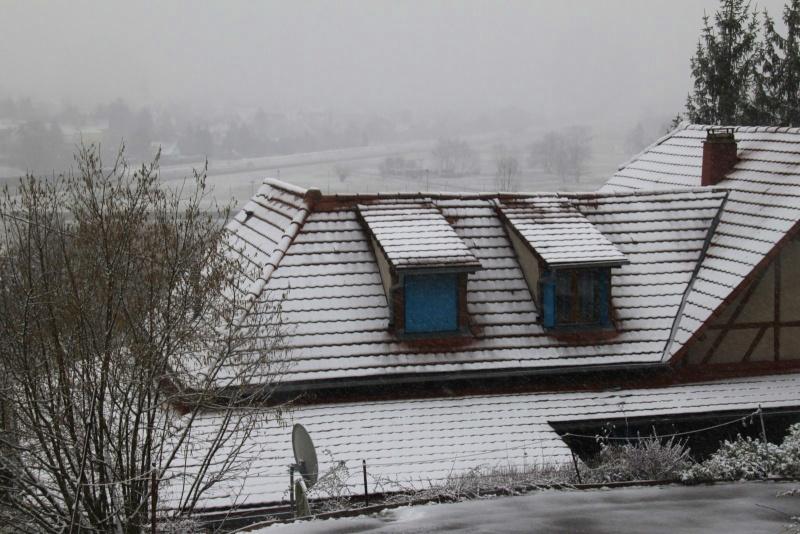 Neige du 29 janvier 2012 sur Wangen Img_0046