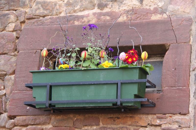 Pâques 2012 à Wangen ! Img_0144