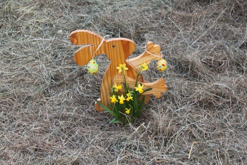Pâques 2012 à Wangen ! Img_0151