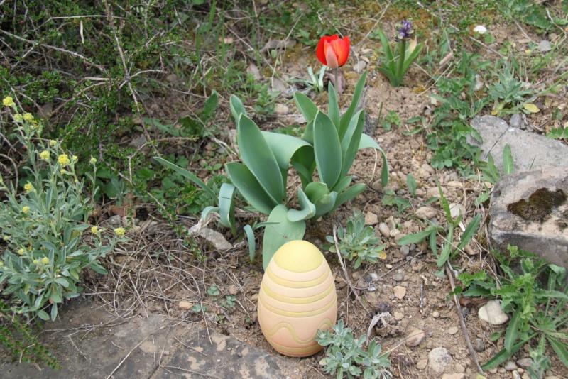 Pâques 2012 à Wangen ! Img_0218