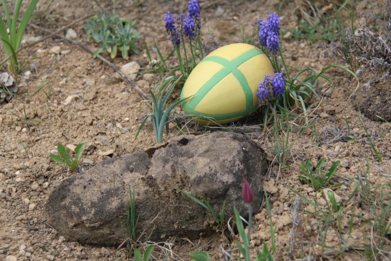 Pâques 2012 à Wangen ! Img_0219