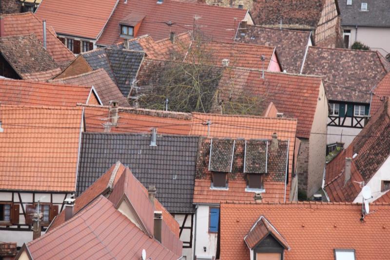 Sur les toits de Wangen Img_0440