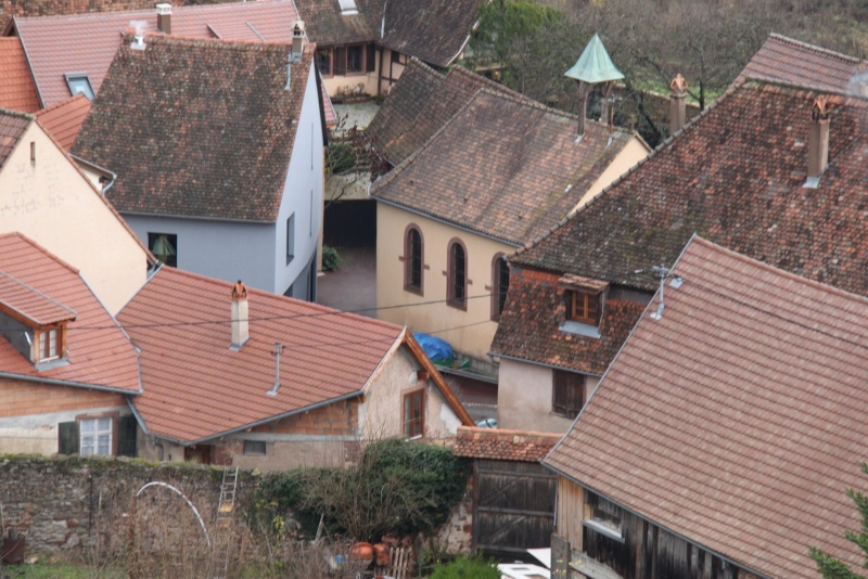 Sur les toits de Wangen Img_0441