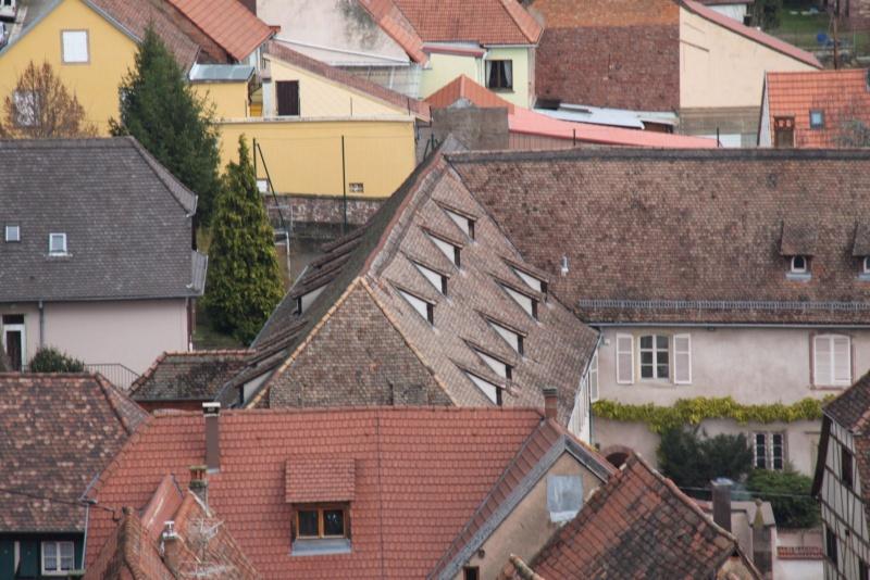 Sur les toits de Wangen Img_0518