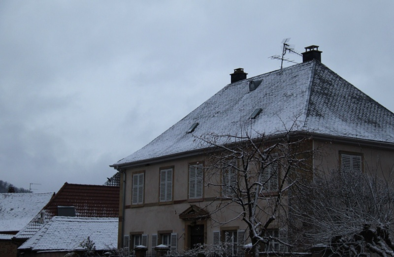 Premiers flocons de neige de décembre 2012 sur  Wangen Img_0722
