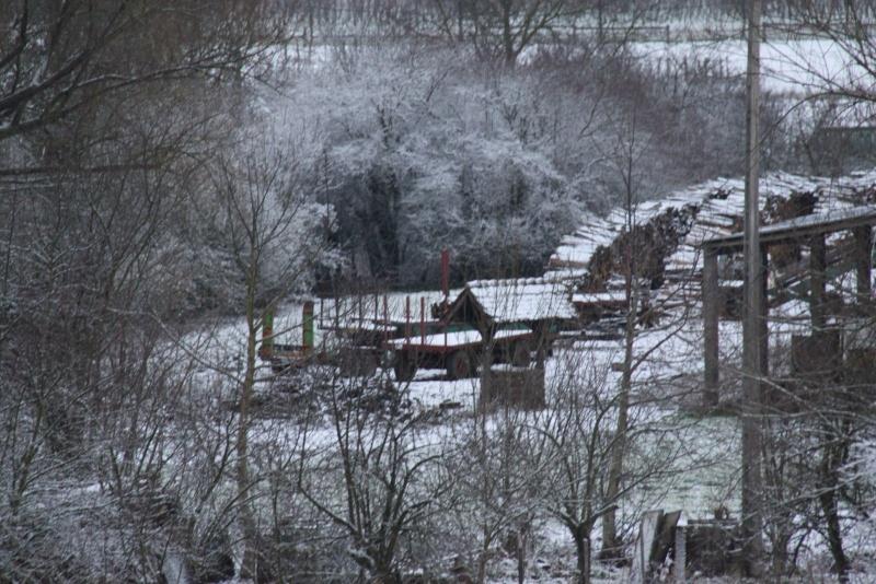 Premiers flocons de neige de décembre 2012 sur  Wangen Img_0730