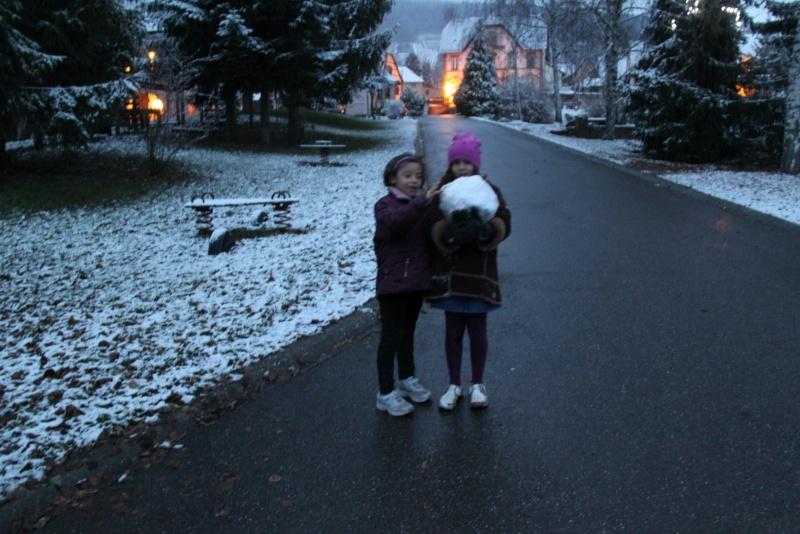 Premiers flocons de neige de décembre 2012 sur  Wangen Img_0731