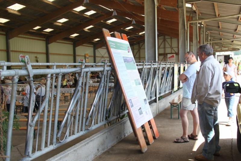 Fête des jeunes agriculteurs du canton de Wasselonne ,ferme du Wangenberg,29 juillet 2012 Img_2148
