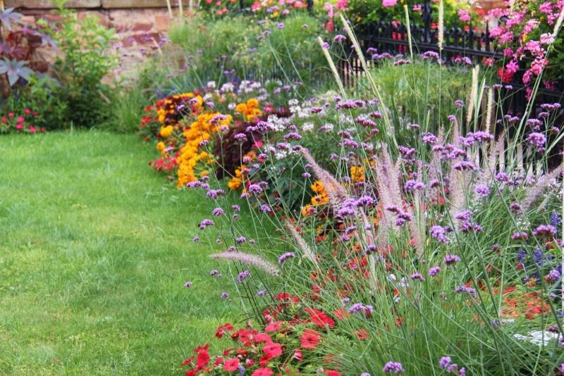 Fleurs de Wangen ,été 2012 ! Img_2211