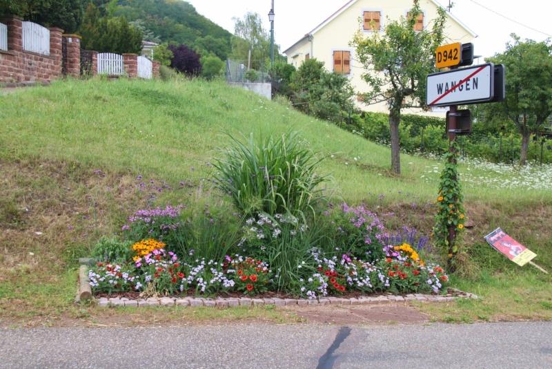 Fleurs de Wangen ,été 2012 ! Img_2212