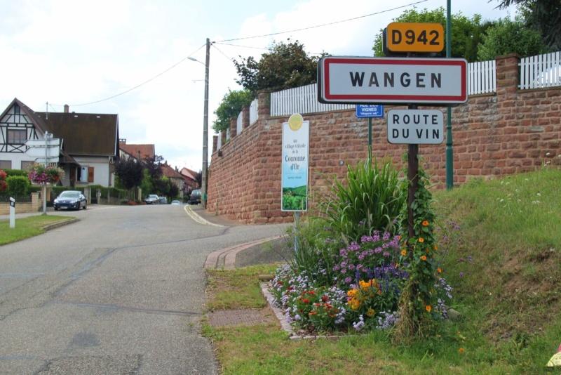 Fleurs de Wangen ,été 2012 ! Img_2216