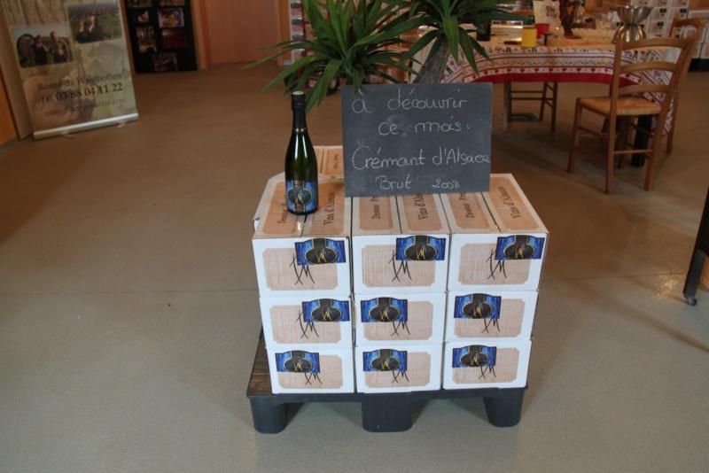 Vins et Crémant d'Alsace Thierry- Martin - Page 2 Img_7715