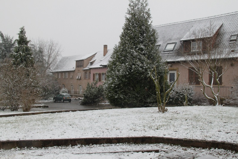 Neige du 29 janvier 2012 sur Wangen Img_9964