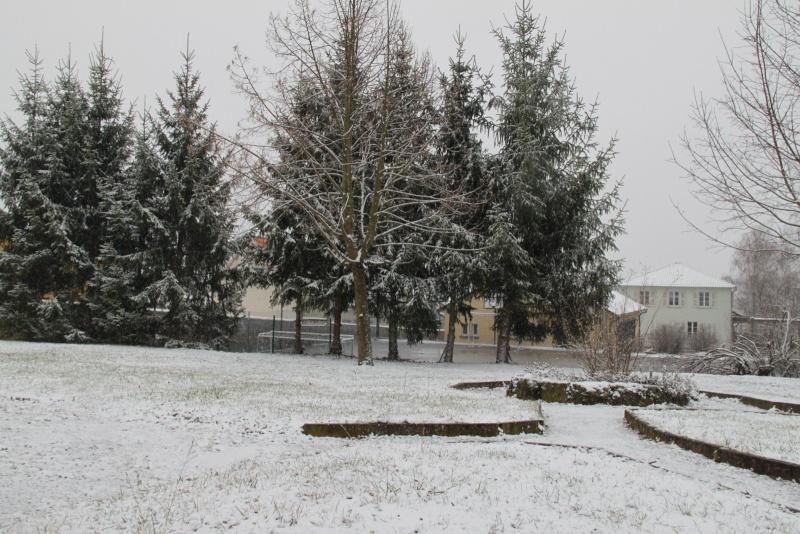 Neige du 29 janvier 2012 sur Wangen Img_9965