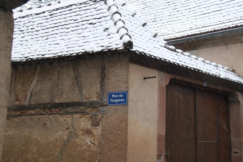 Neige du 29 janvier 2012 sur Wangen Img_9967