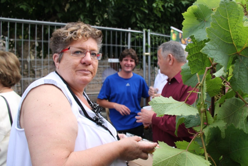 Wangen : Fête de la Fontaine le 8 juillet 2012 Pisci120