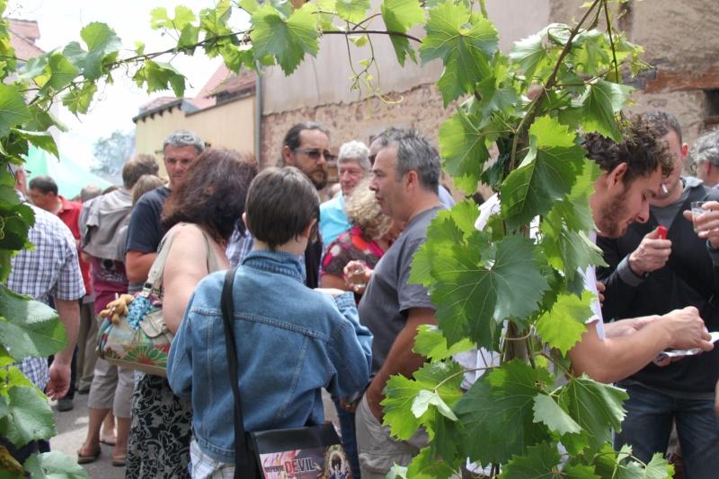 Wangen : Fête de la Fontaine le 8 juillet 2012 Pisci142