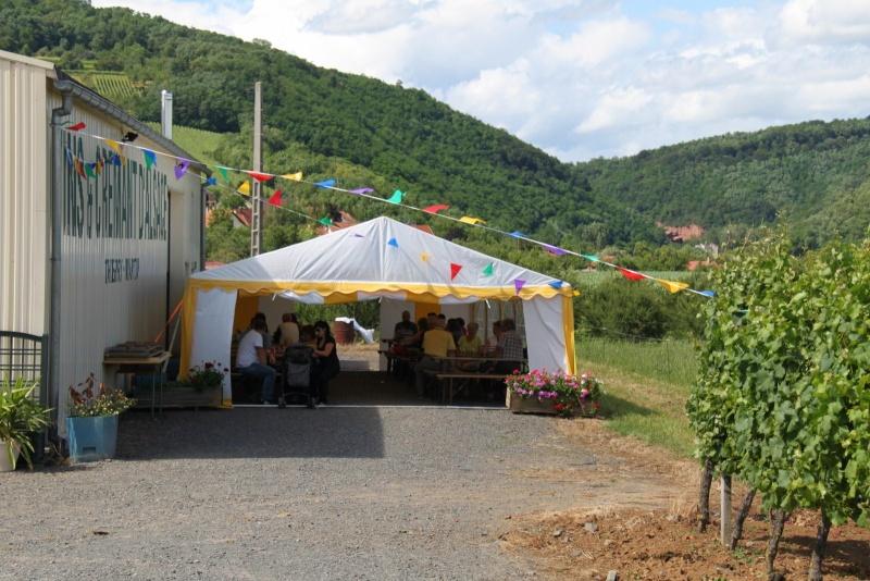 Wangen : Fête de la Fontaine le 8 juillet 2012 Pisci225
