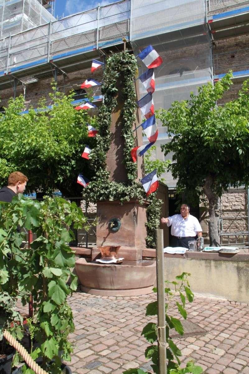 Wangen : Fête de la Fontaine le 8 juillet 2012 Piscin74
