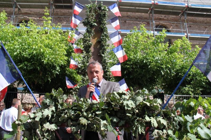 Wangen : Fête de la Fontaine le 8 juillet 2012 Piscin84
