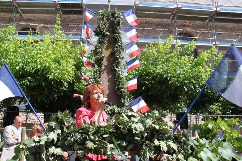 Wangen : Fête de la Fontaine le 8 juillet 2012 Piscin91