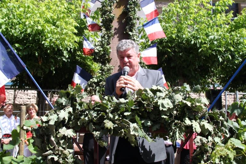 Wangen : Fête de la Fontaine le 8 juillet 2012 Piscin94